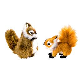 """Eichhörnchen """"Flap"""""""
