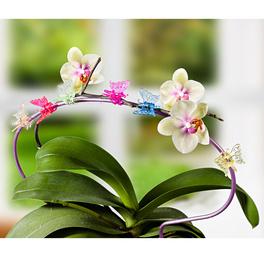 "Pflanzenclips ""Schmetterling"", 6er-Set"