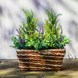 Pflanzenkorb mit Erika
