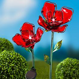 Solar-Blüte rot