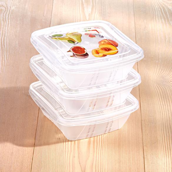 0,5 l Frischhaltedosen, 3er-Set