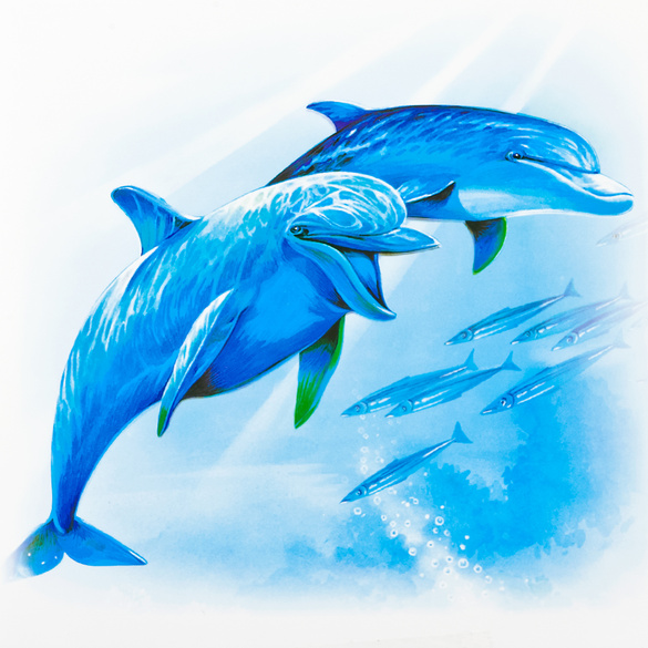 "Fliesen-Aufkleber ""Delfine"" 12er-Set"