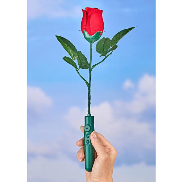"Rose ""Happy Birthday""Musik"