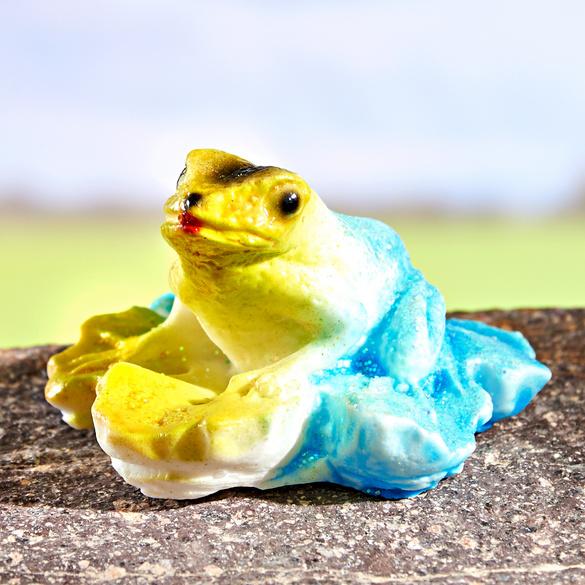 Wetterfrosch