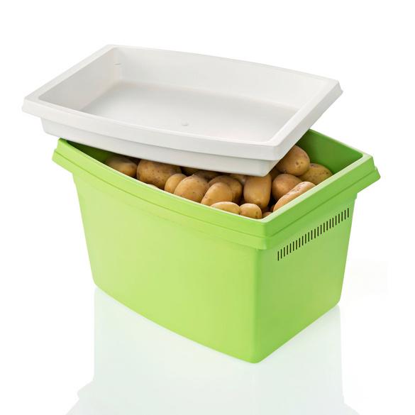 Kartoffelbox grün