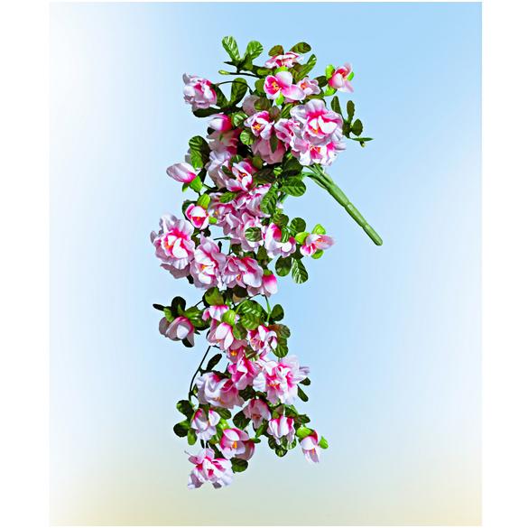 Hängeazalee weiß-rosa