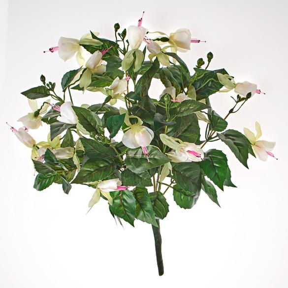 Fuchsienbusch weiß-rosa
