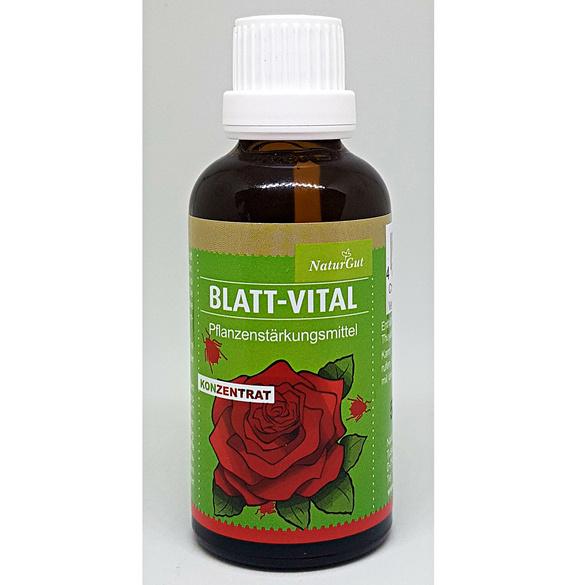 Blatt-Vital
