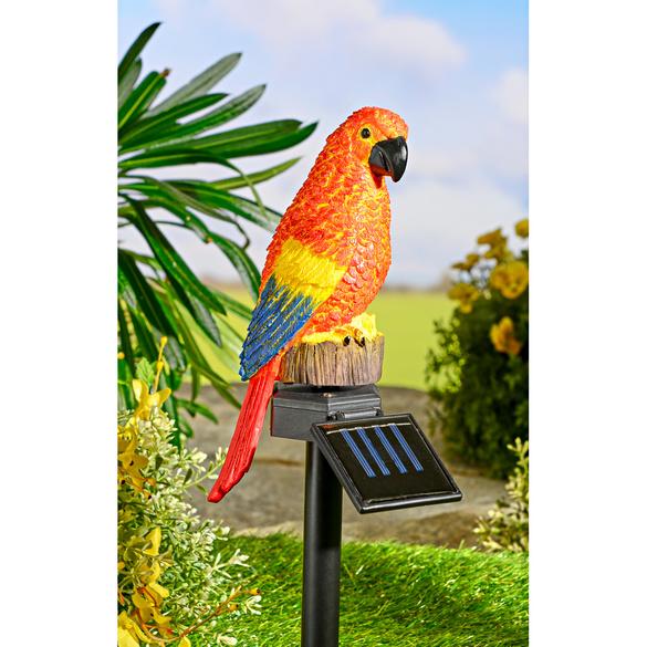 Solar-Papagei