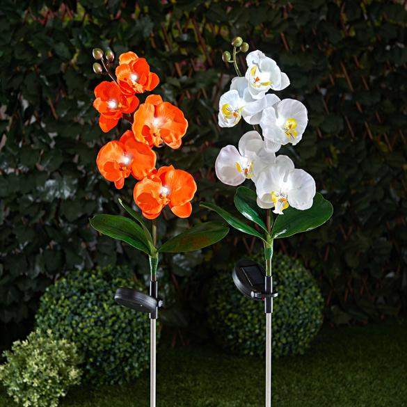"""Solarleuchte """"Orchidee"""" weiß"""