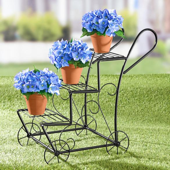 Hortensie blau Casa Bonita
