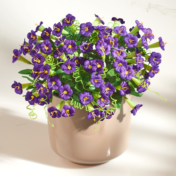 Petunien-Bouquet lila