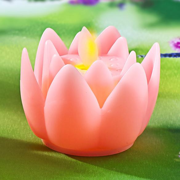 LED-Blüte rosé