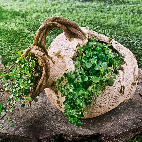 Pflanzkrug liegend