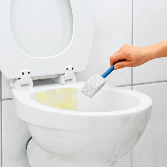 Spezial-WC-Reiniger Clarsen