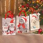 """Weihnachtstüten """"Kätzchen"""", 3er-Set"""