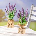 1 Lavendel im Jutesack