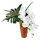 Orchideen + Vase