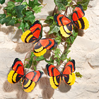 XL-Schmetterling-Clips, 4er-Set