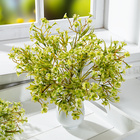 Wiesenblumenstrauß sonnengelb