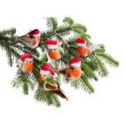 Deko-Vögel mit Weihnachtsmützen, 6er-Set