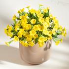 Petunien-Bouquet gelb Casa Bonita