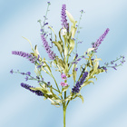 Lavendelzweig