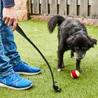 Hunde-Ballschleuder mit Ball